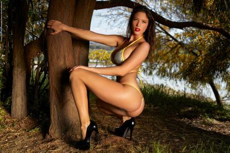 Savannah - Magic In The Woods  q6r3384ti0.jpg